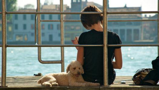 A Venezia con il cane: 5 ristoranti pet-friendly