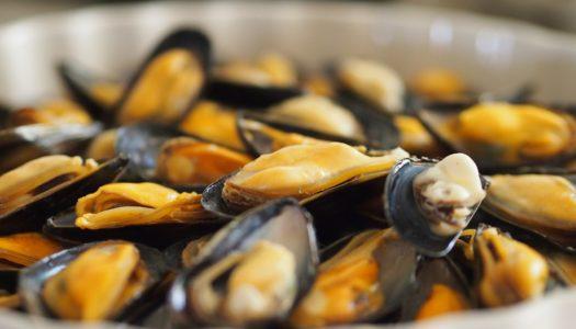 Pranzo veneziano perfetto: menu di pesce