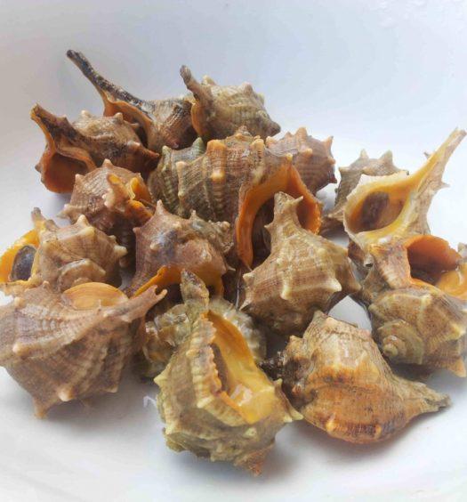 ricetta dei garusoli